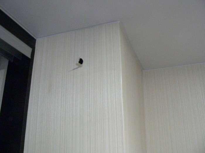 Несподівана знахідка в стіні (6 фото)