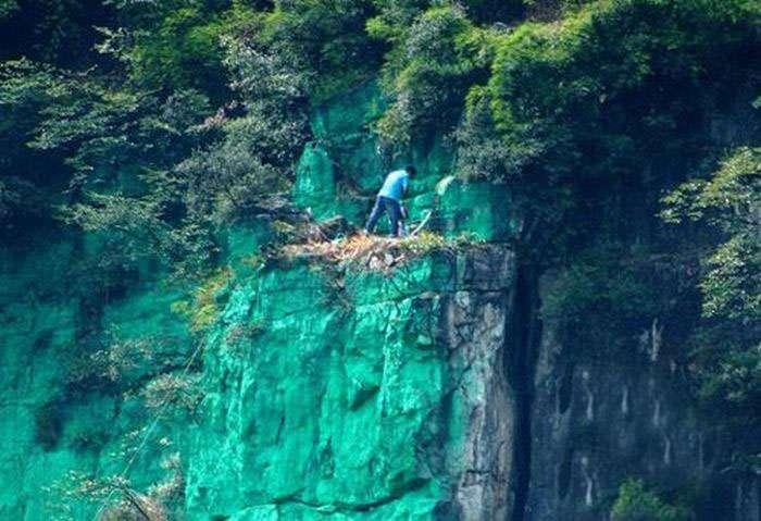 Китаєць перефарбував гору в зелений колір, так як вона не відповідала правилам фэншуя (4 фото)