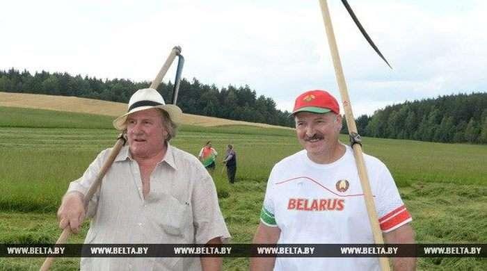 Жерар Депардьє і Олександр Лукашенко разом накосили сіна (6 фото)