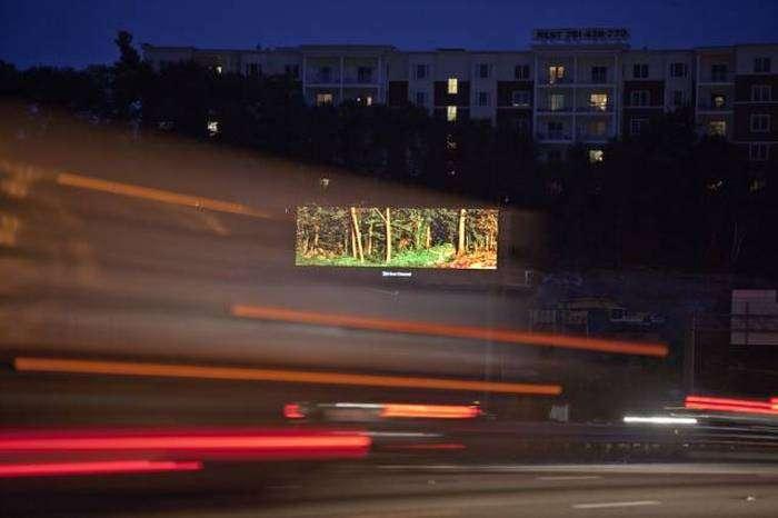 Реклама, забезпечує позитивні емоції (6 фото)