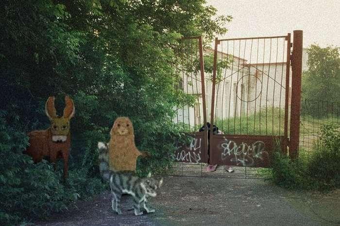 Сумна реальність у нереальних картинках (40 картинок)
