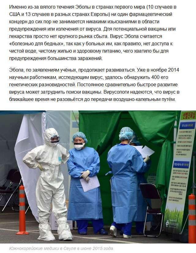 Нові віруси XXI століття (8 фото)
