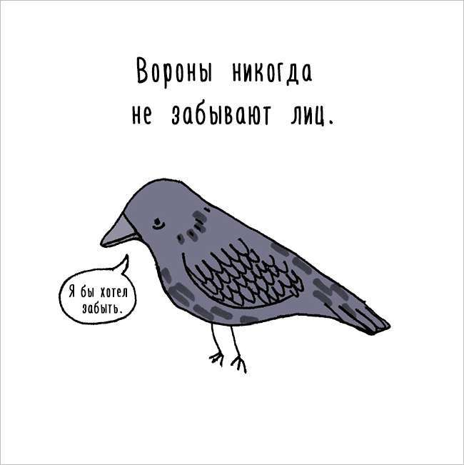 Цікаві факти про тварин в кумедних коміксів (17 картинок)