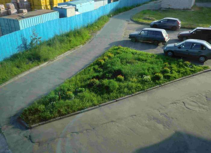 Клумба, як засіб боротьби з любителями паркування на газонах (11 фото)