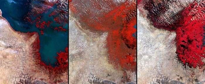 Як людство змінює вигляд Землі (17 фото)