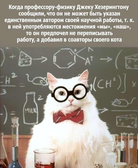 Жарти вчених (20 картинок)