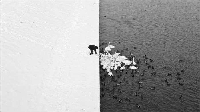Дивовижні фотографії без краплі фотошопу (17 фото)