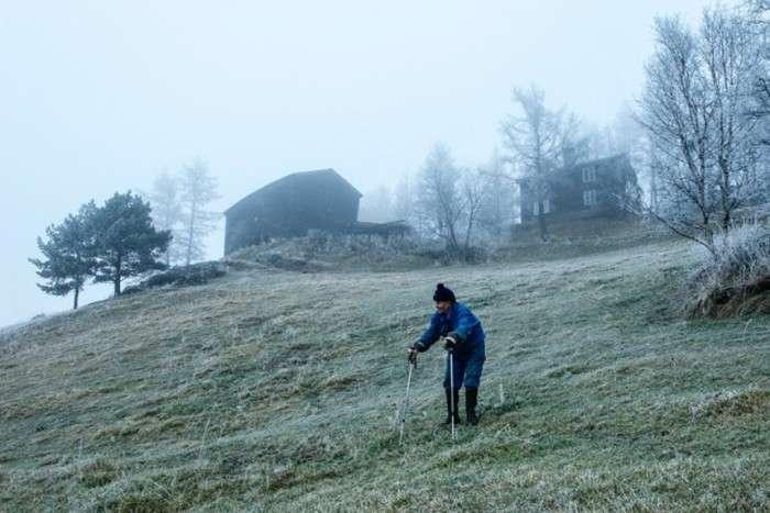 Життя норвезького лісового людини (30 фото)