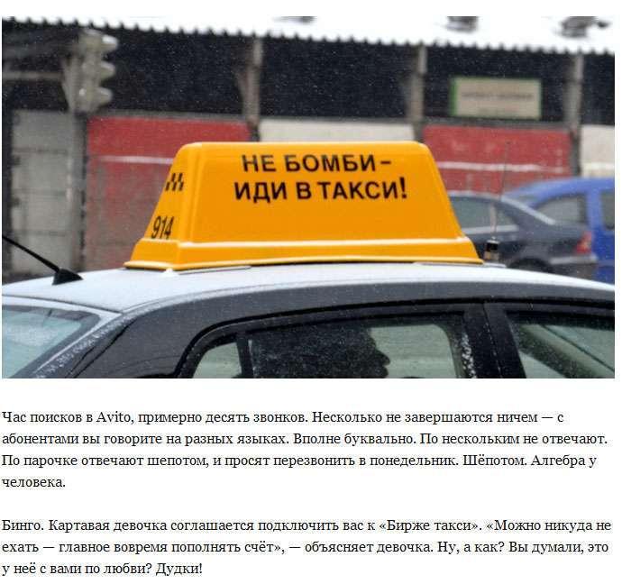 Руйнування міфу про «нероб» таксистів (15 фото)