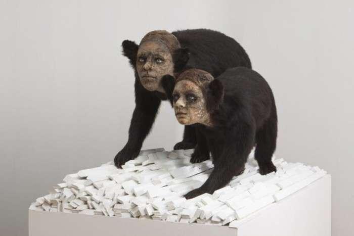 Опудала тварин з людськими особами від Кейт Кларк (30 фото)