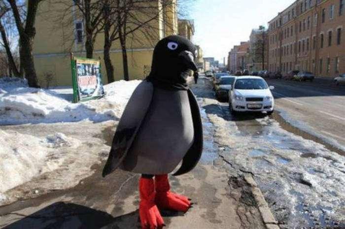 Фото, які можливо було зробити тільки в Росії. Частина 9 (40 фото)