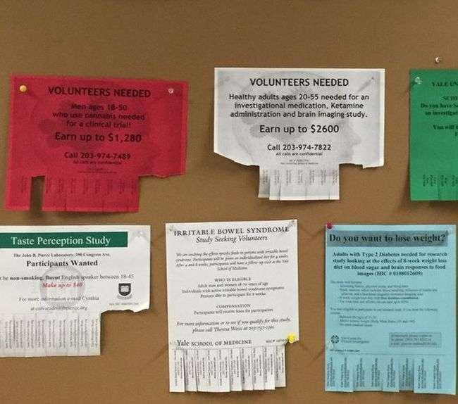 Які дослідження проводяться в Єльському університеті (4 фото)