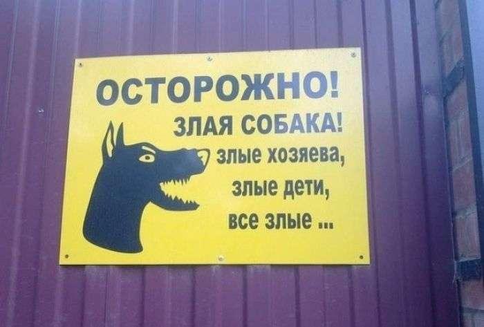 Таблички з кумедними попередженнями (16 фото)