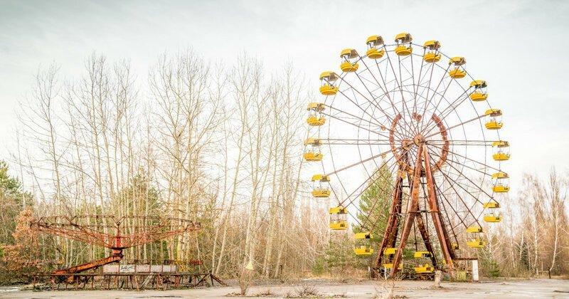 Почему растения Чернобыля не гибнут от рака Интересное