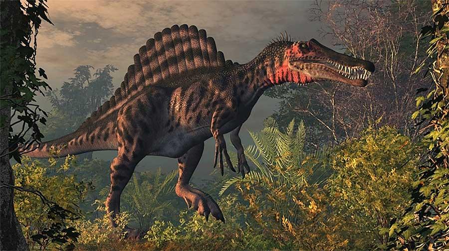 Какой самый большой динозавр в мире: фото и описание зверушки,живность,питомцы, Животные