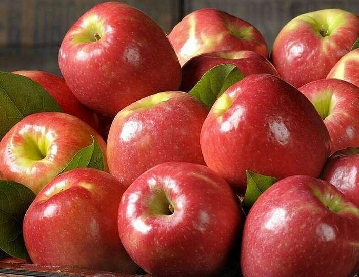 Какие фрукты и овощи лучше покупать только в сезон   Интересное