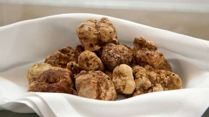 Икра белуги-альбиноса, черный арбуз и другие продукты, которые едят только богатые. А бедные – если повезет Интересное
