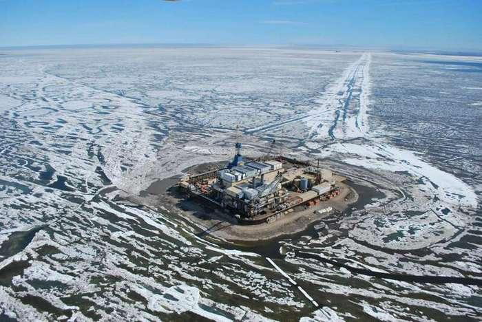 Муклук: нефтяной провал стоимостью 1 млрд долларов   Интересное