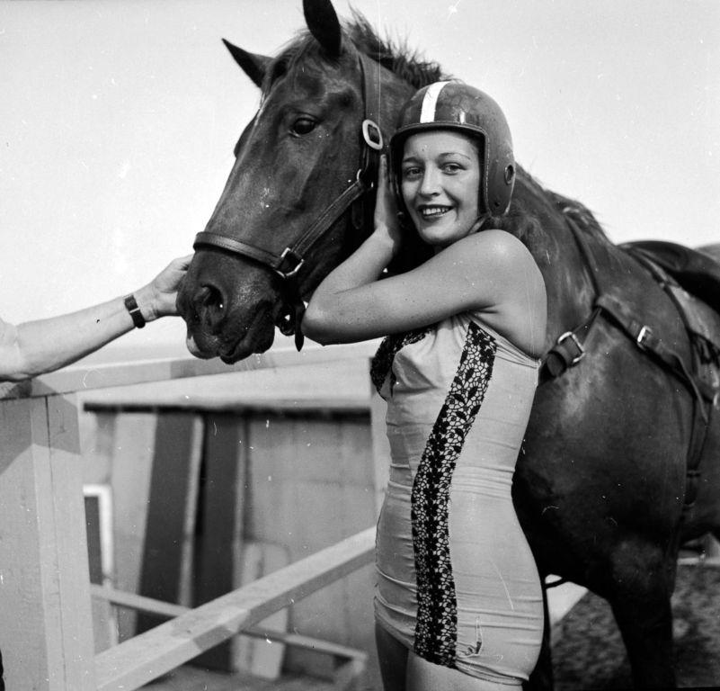 Ныряющие лошади — странная американская забава Интересное