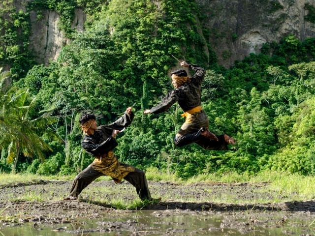 Защити себя сам: 7 необычных боевых искусств интересное