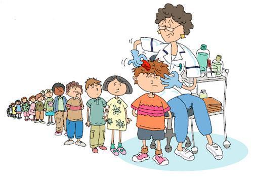 Вши: что должны знать родители болезни