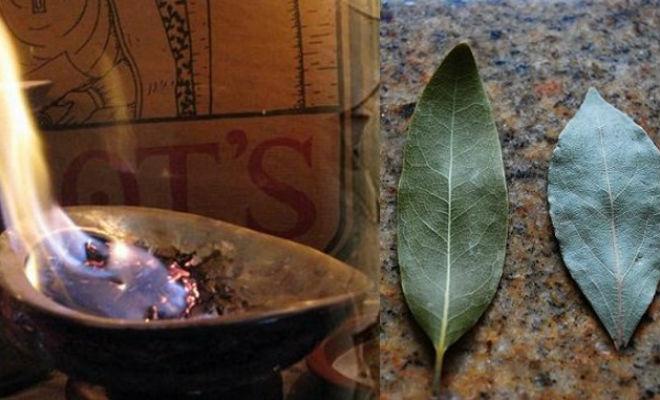 Поджигаем лавровый лист: хитрость опытных жильцов дом