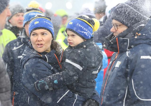 Шведская кронпринцесса Виктория с мужем и детьми попали в снежную бурю Монархи / Новости монархов