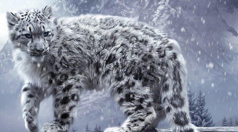 Потрясающие кошки, которые почти исчезли животные