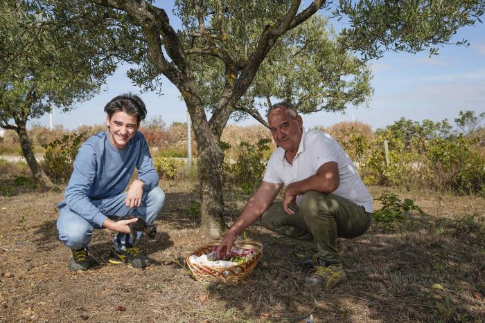 В итальянском городке можно поработать местным жителем