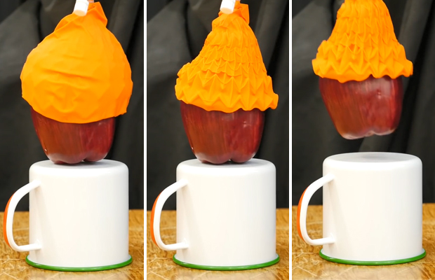 Этот «резиновый тюльпан» способен бережно поднимать тяжёлые предметы Головоломки
